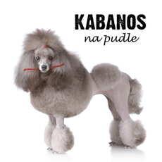 CD Kabanos - na Pudle Digipack - 2012
